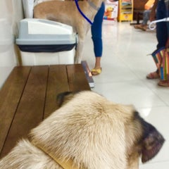 Photo taken at โรงพยาบาลสัตว์สุวรรณชาด (Suwanchard Pet Hospital) by Pla S. on 9/30/2014