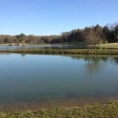 Photo taken at Lamar Park-Lake Patsy by Jillian O. on 4/5/2013