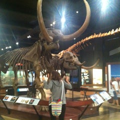 Photo taken at Exhibit Museum of Natural History by Javier L. on 7/27/2013