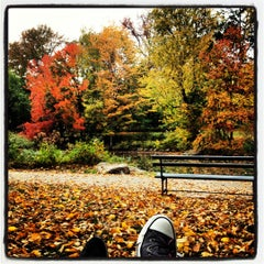 Photo taken at Central Park - The Pool by Netta K. on 10/27/2012