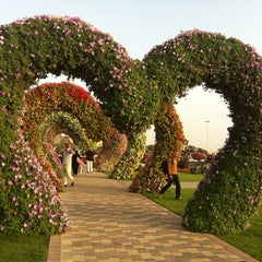 Photo taken at Dubai Miracle Garden by Hilal K. on 2/25/2013