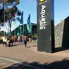 Photo taken at Sydney Olympic Park Aquatic Centre by Paul L. on 6/8/2014