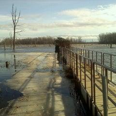 Photo taken at Iroquois National Wildlife Refuge by Debi B. on 1/13/2013