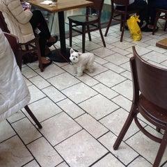 Photo taken at Starbucks by Gary S. on 2/2/2014