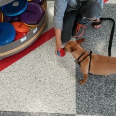 Photo taken at Petco by Jessa F. on 5/24/2014