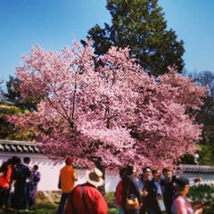 Photo taken at Shofuso Japanese House and Garden by winston y. on 4/13/2015