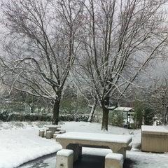 Photo taken at Université Lumière Lyon 2 - Campus Porte des Alpes by Nas E. on 1/15/2013