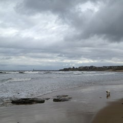 Photo taken at Cullercoats Beach by Arran on 2/24/2013