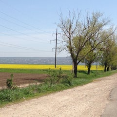Photo taken at МАПП «Виноградівка» (UA-MD) by Natalia A. on 4/28/2013