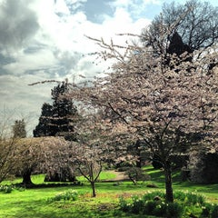 Photo taken at Leschi Park by Vacant F. on 3/28/2013