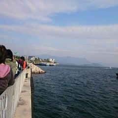 Photo taken at Ma Liu Shui Ferry Pier 馬料水渡輪碼頭 by Godfrey C. on 12/21/2014