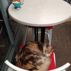 Photo taken at Montifiori Café (מונטיפיורי קפה) by Katrin K. on 1/14/2014