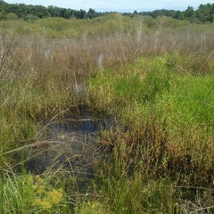 Photo taken at Spanish Pond at the Timucuan Preserve by Tim B. on 8/27/2013