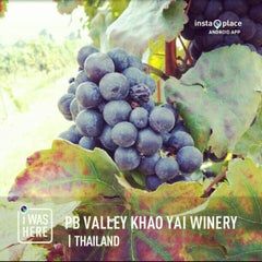 Photo taken at PB Valley Khao Yai Winery by Thitikorn P. on 2/16/2013