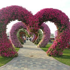 Photo taken at Dubai Miracle Garden by Chami R. on 2/28/2013