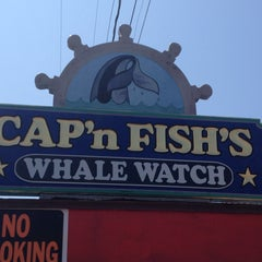 Photo taken at Cap'n Fishs Cruises (AKA Maine Whales) by Michael M. on 8/5/2014