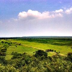 Photo taken at Taman Nasional Baluran (Baluran National Park) by Mochamad Moka B. on 8/7/2014