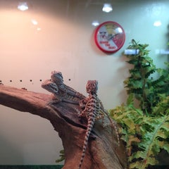 Photo taken at Uncle Bill's Pet Store by Candis O. on 3/12/2014