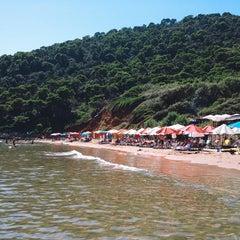 Photo taken at Sunj Lopud Beach by Julia Z. on 8/30/2014