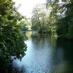 Das Foto wurde bei Neuer See von marcus a. am 5/16/2013 aufgenommen