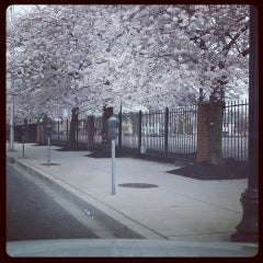 Photo taken at Park Heights by R M. on 4/14/2014