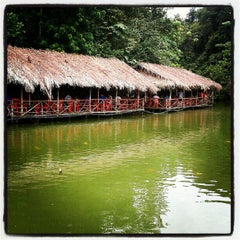 Photo taken at Veg Fish Farm Thai Restaurant (菜园酒家) by Ng L. on 8/31/2012