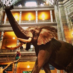 Foto tirada no(a) National Museum of Natural History por David em 3/16/2013