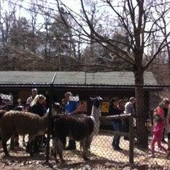 Photo taken at High Park Zoo by Nashib Q. on 4/28/2013
