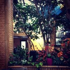 Photo taken at Bambus Garten by Ekaterina P. on 9/8/2014