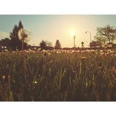 Photo taken at Corn Hill by Matt D. on 5/18/2014