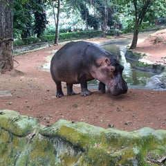 Photo taken at Trivandrum Zoo by Semen S. on 12/4/2014