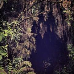 Photo taken at Waitomo Glowworm Caves by Scott J. on 11/26/2012