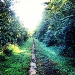 Photo taken at Shelby Bottoms Greenway by Drew R. on 9/15/2013