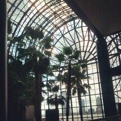 Photo taken at Winter Garden Atrium by brendan w. on 7/7/2013