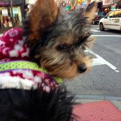 Photo taken at Greene Street by Richard L. on 12/28/2012