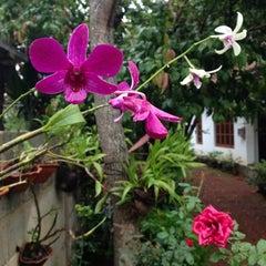 Photo taken at Kandana | කඳාන | கந்தானை by Pavi Beck प. on 5/20/2013