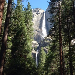 Photo taken at Lower Yosemite Falls by Manolo M. on 6/13/2015