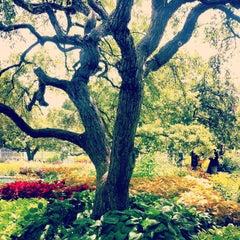 Photo taken at Prescott Park by Julie B. on 8/4/2013