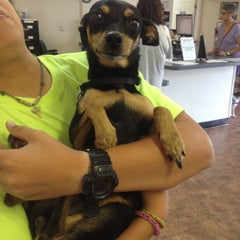 Photo taken at Humane Society - Greater Miami by Gabriella M. on 8/3/2013