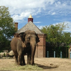 Photo taken at Audubon Zoo by Ashley S. on 10/18/2013