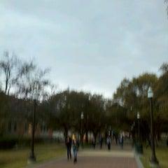 Photo taken at Military Walk by Linda C. on 1/24/2012