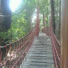 Photo taken at Bukit Nanas Forest Reserve by Syuhaimi Fauzi S. on 11/12/2015