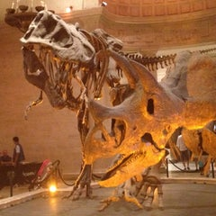 Photo taken at Natural History Museum of Los Angeles County by Judy B. on 7/11/2013