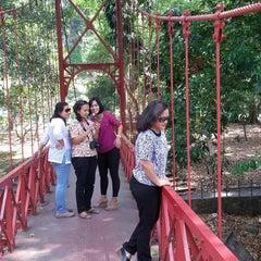 Photo taken at Kebun Raya Bogor by Elvinateshiloh'smom S. on 9/4/2015