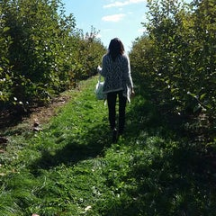 Photo taken at Mack's Apples by Sonia S. on 10/13/2014