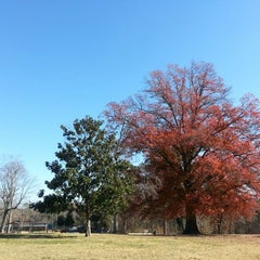 Photo taken at Forest Hill Park by Matheus G. on 11/24/2012