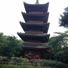Photo taken at 上野動物園 (Ueno Zoo) by Mika S. on 7/10/2013