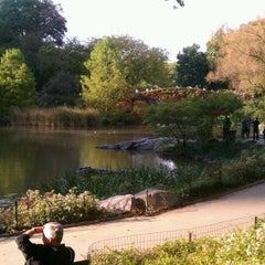 Photo taken at Central Park Duck Pond by Zo D. on 10/15/2011