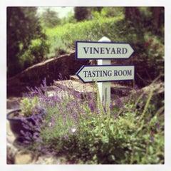 Photo taken at Zephaniah Farm Vineyard by Jess O. on 6/23/2013