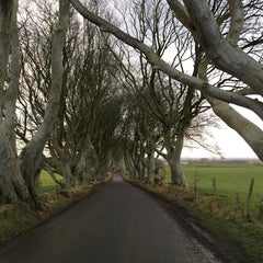 Photo taken at The Dark Hedges by The-Maha on 2/21/2015